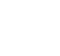 Domestic Landscape Srl